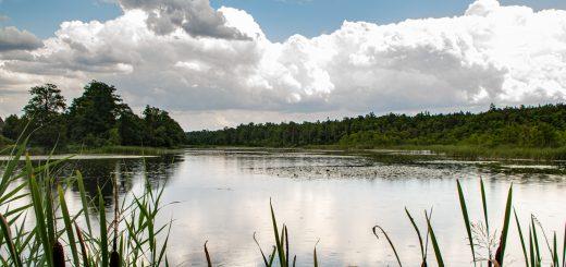 rezerwat Smolnik