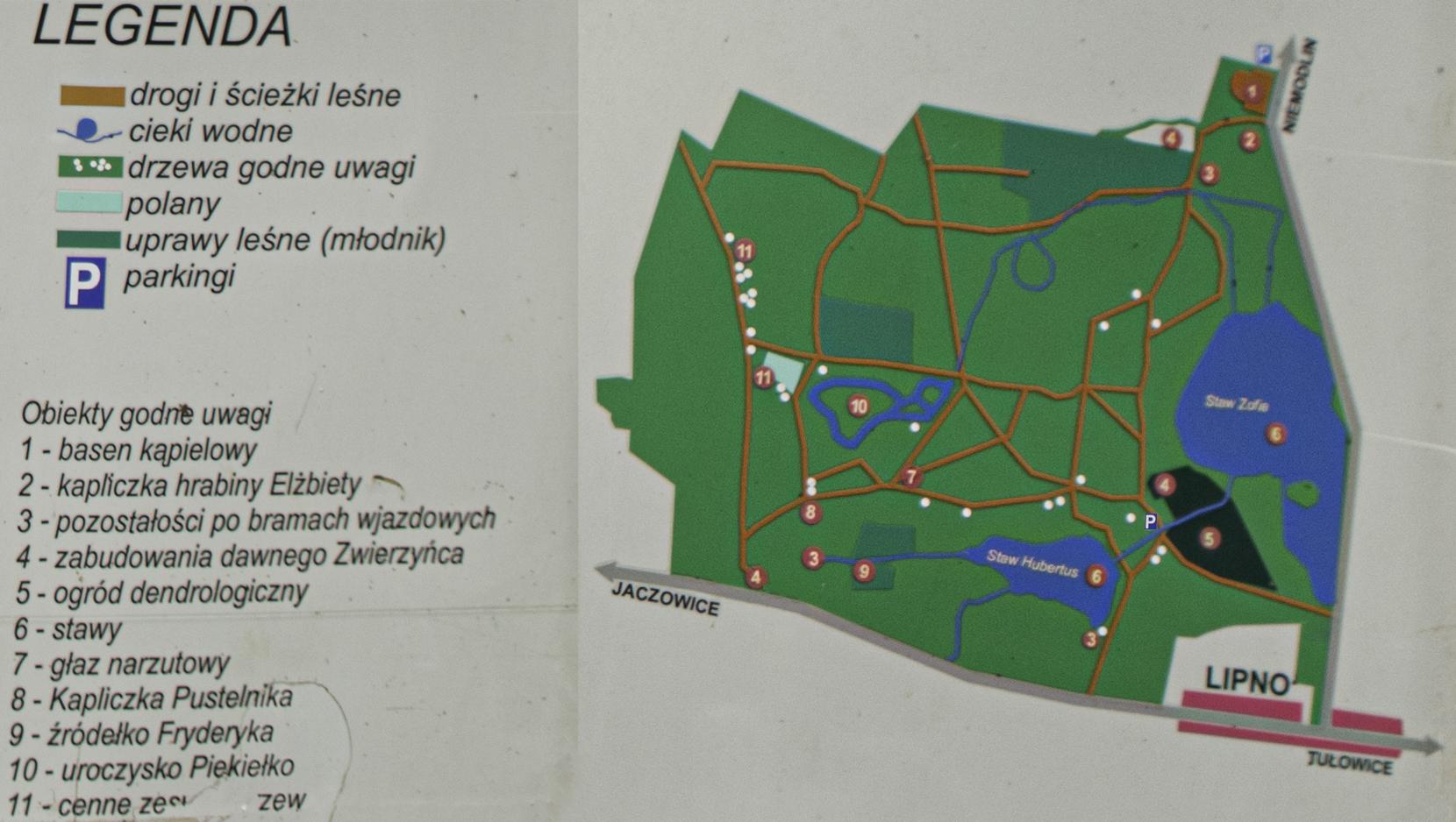 Arboretum w lipnie - mapa