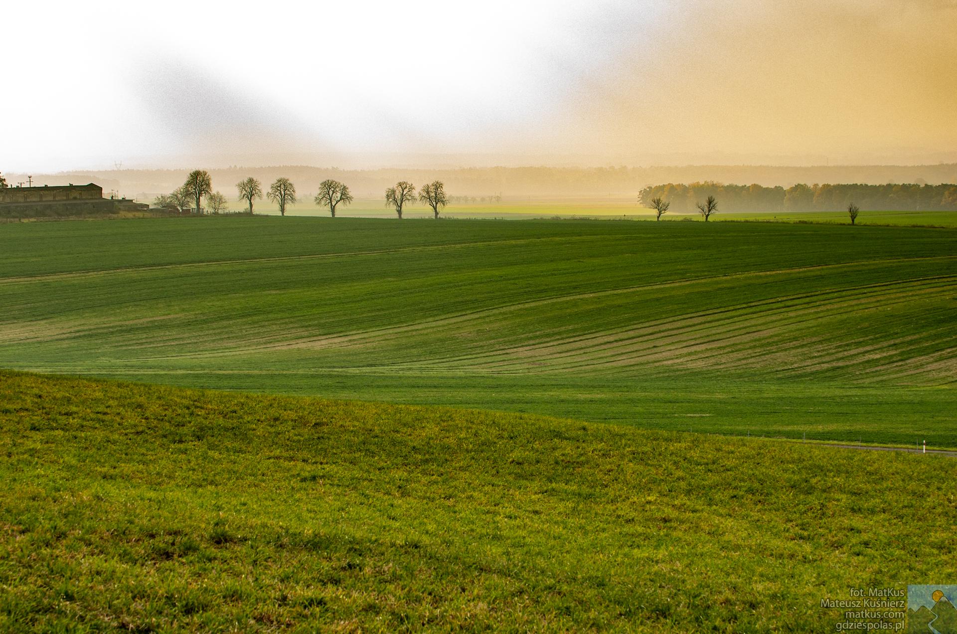 Rezerwat Ligota Dolna, widok na pola