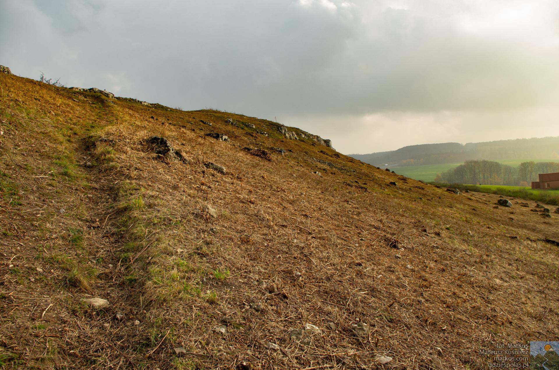 Park Krajobrazowy Góra Św. Anny, skraj Rezerwatu Ligota Dolna