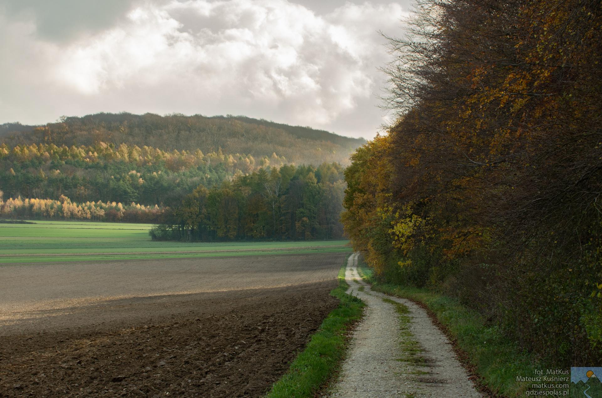 ścieżka pomiędzy Ligotą Dolną, a Lesiskiem